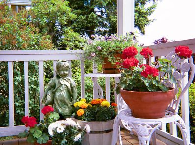 Container garden on front porch