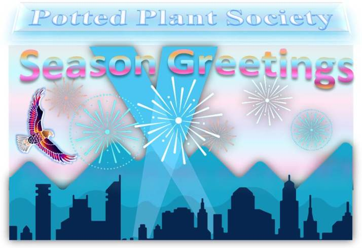 Potted Plant Society in Happy New Year and Season Greetings with City Skyline, Mountains, Spotlights and Fireworks
